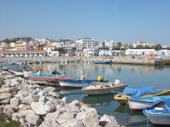 port bouddis